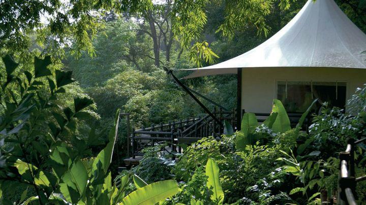 four-season-treehouse