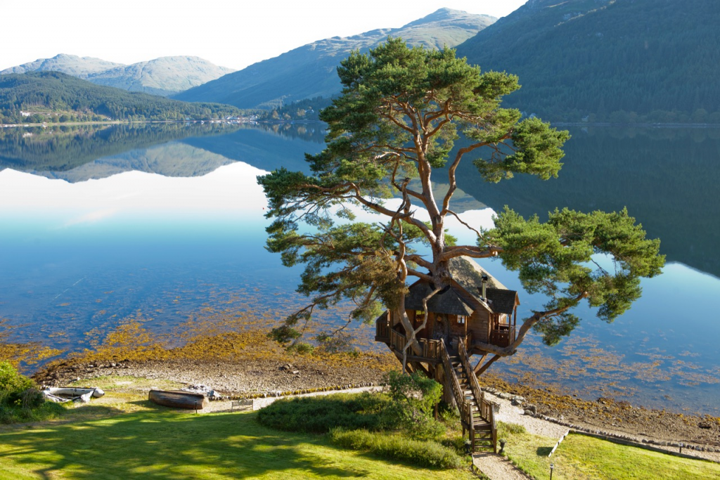 lodge treehouses landscape